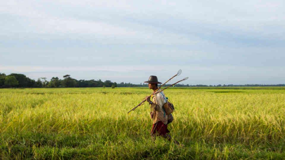Myanmar | UNOPS