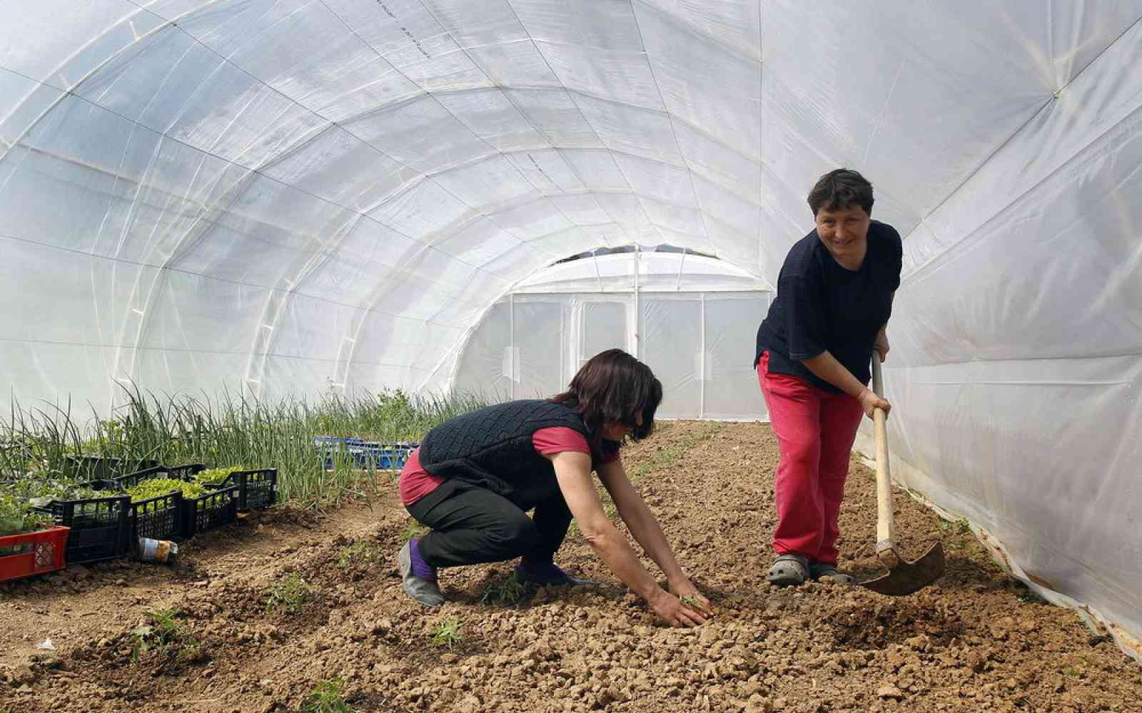 european progres laying the groundwork for serbia s sustainable